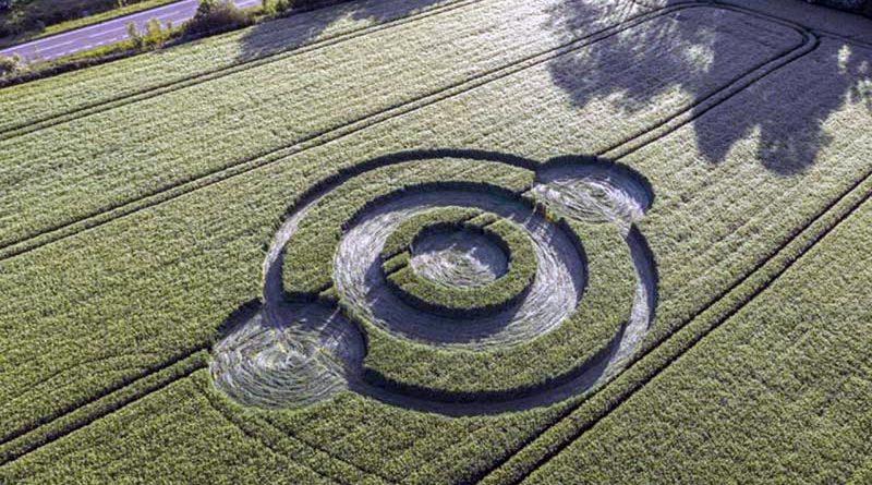 ¿Qué son los círculos de las cosechas?