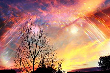 Sefart: el software divino que decodifica la Biblia